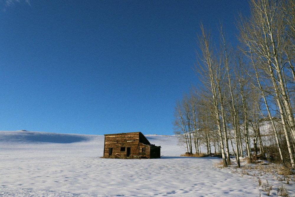 Tiffany Davidson Washington State Photographer Homesteading Blog