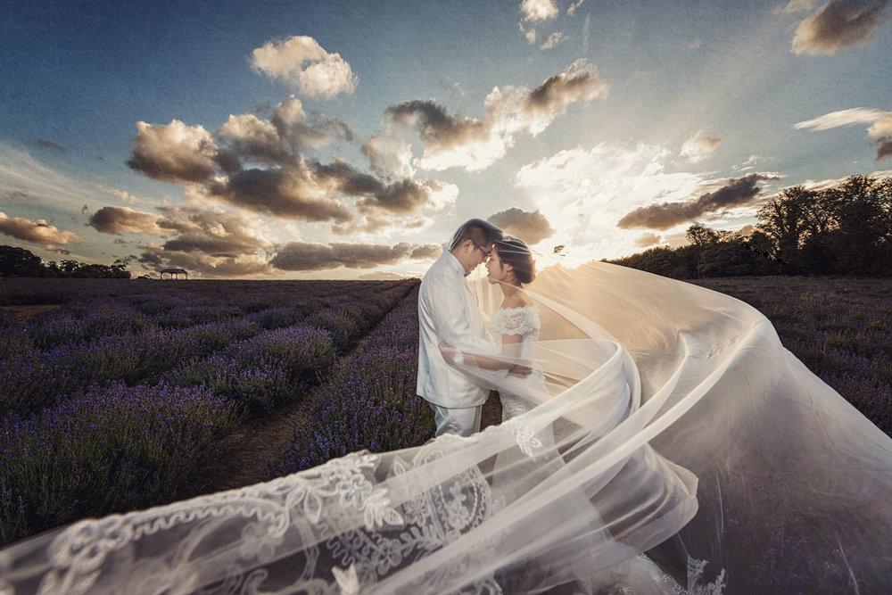 Lavender field wedding photos