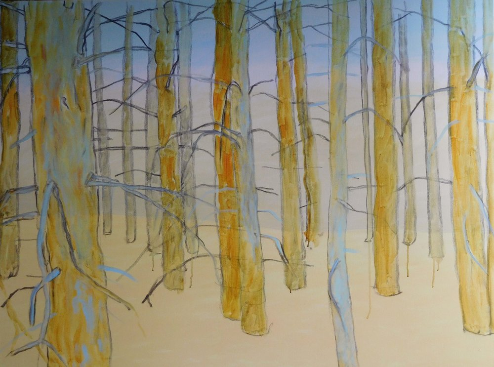 20160507 Forest.jpg