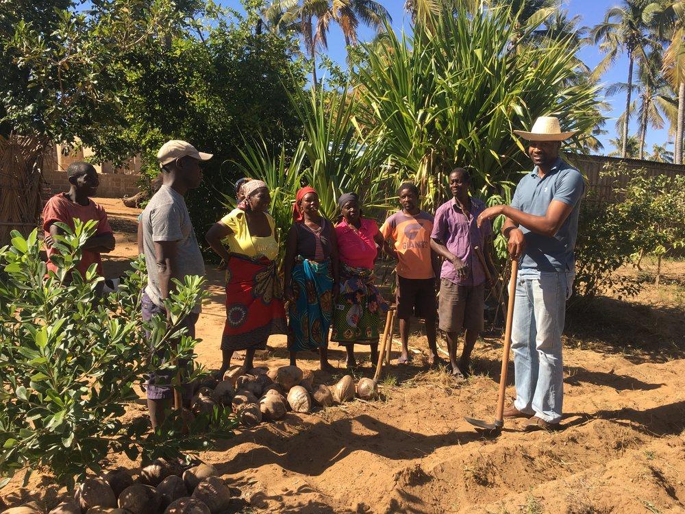 Boa Gente workers planting the coconut nursery © Boa Gente