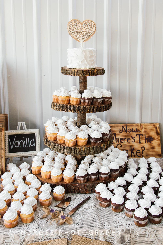 Zumbrota-Country-Wedding-Minnesota-Wedding-Photographer-41.jpg