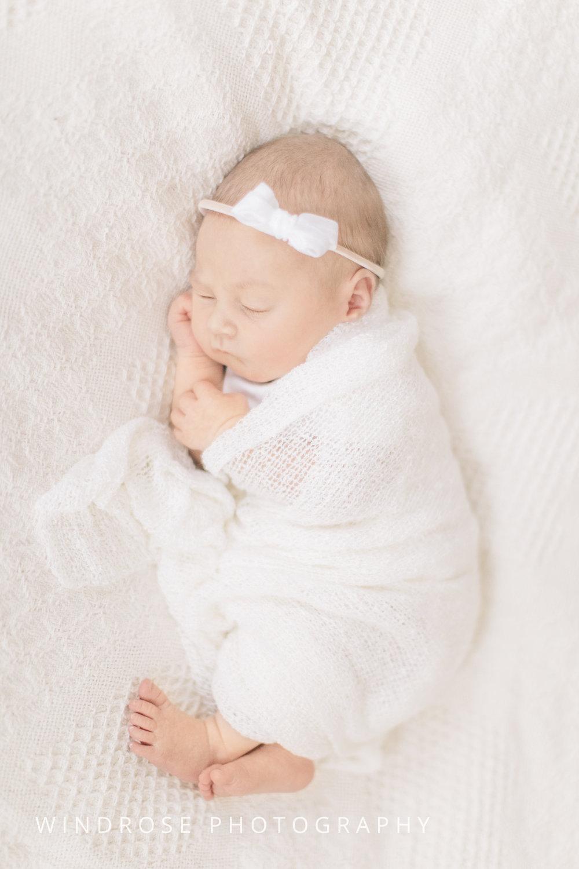 Newborn-Photography-Session-Rochester-MN-7.jpg