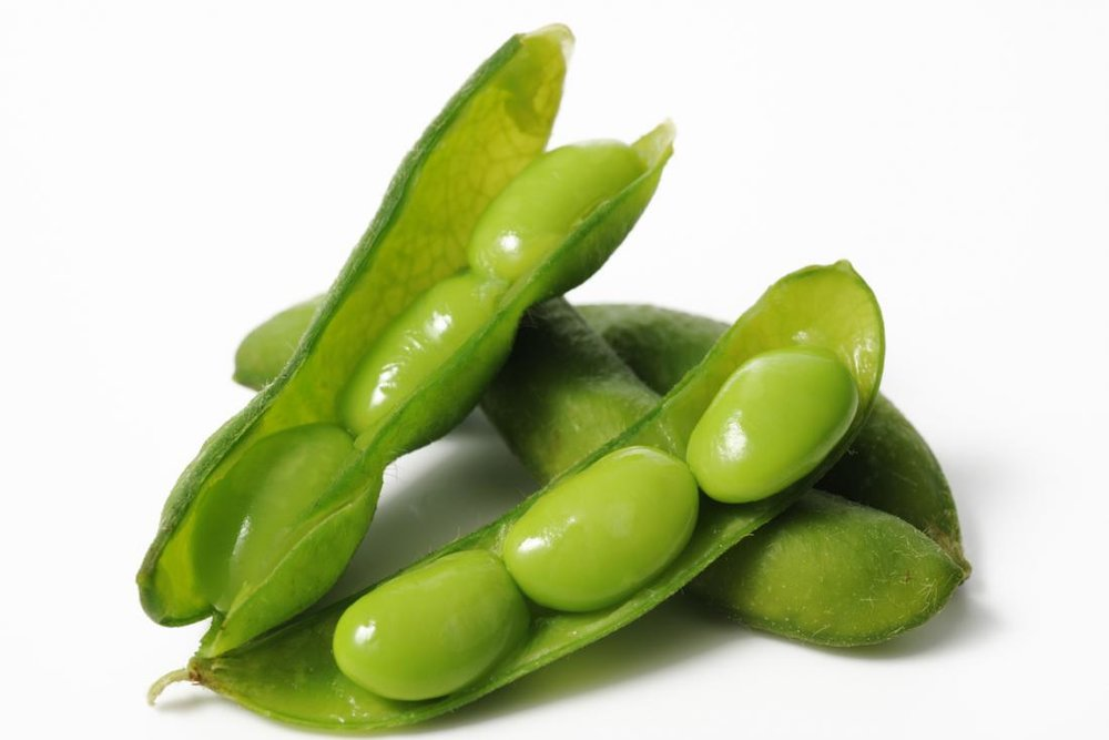 edamame-beans-are-a-young-soy-bean.jpg