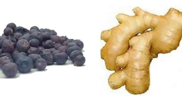 Berries-and-Ginger.jpg