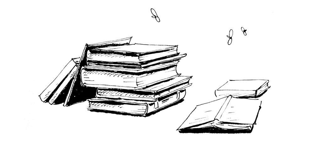 BooksAndMoths.jpg