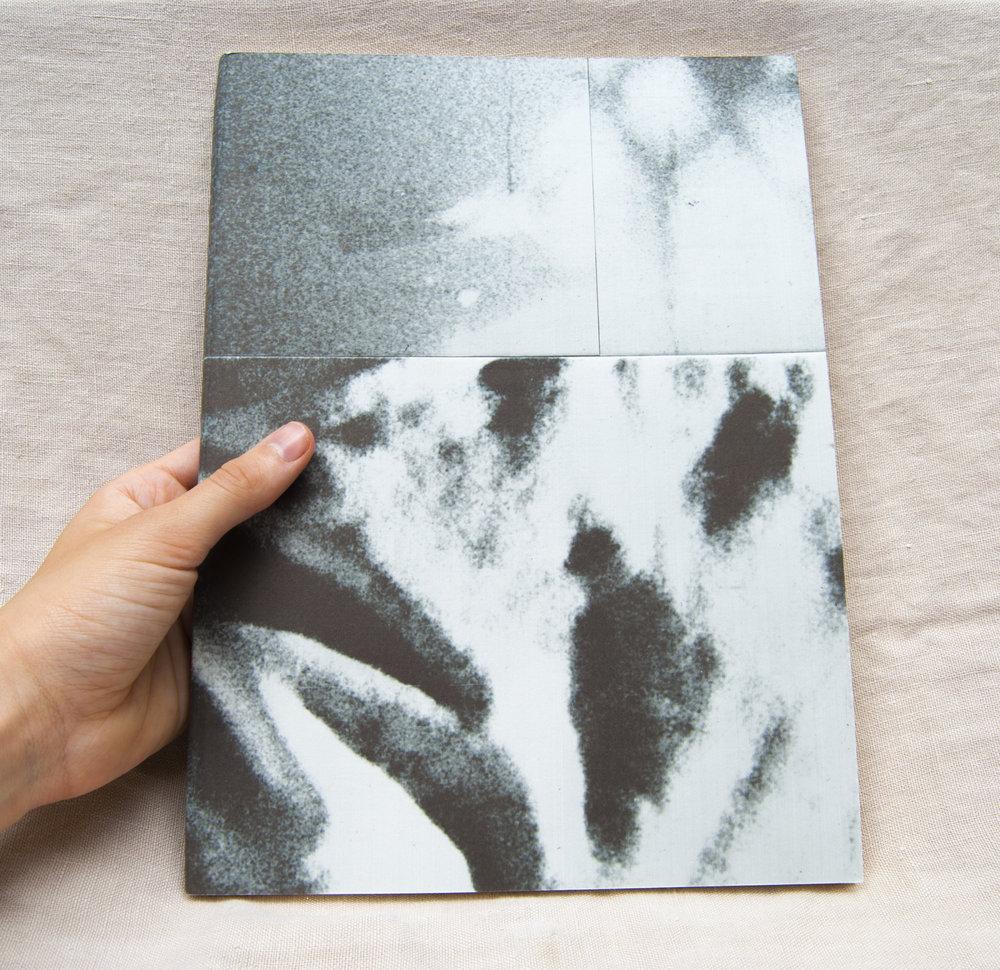 book.hand.1.jpg