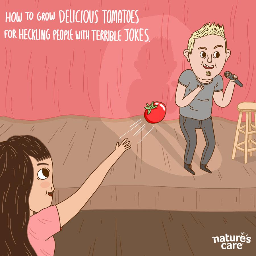 tomatoes_900.jpg