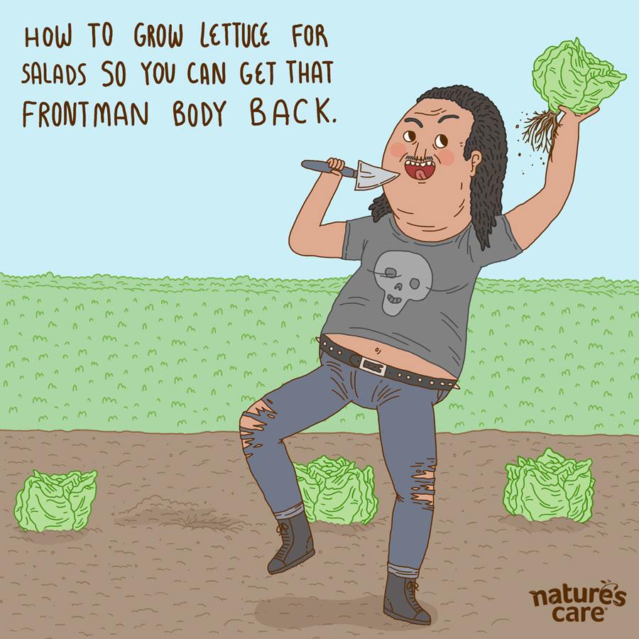 lettuce_900.jpg