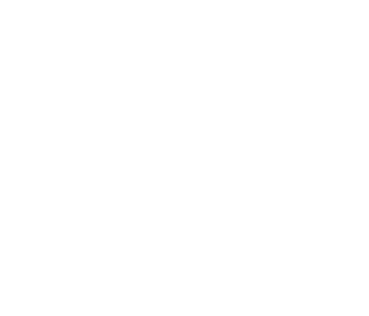 ZIG-LOGO-banner.png