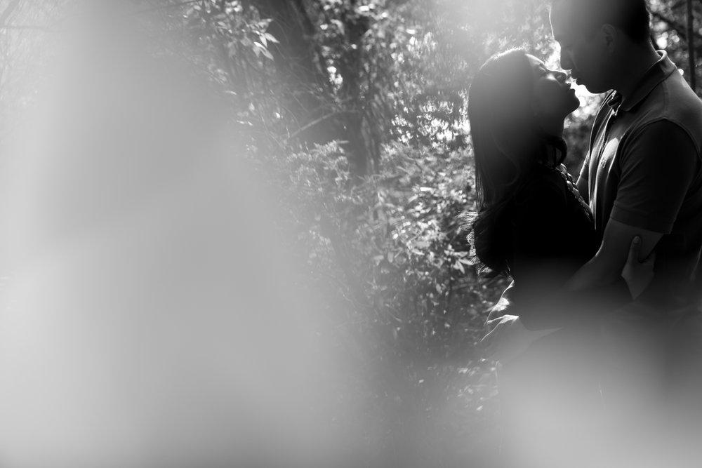 Martin McMahon Photography-4301.jpg