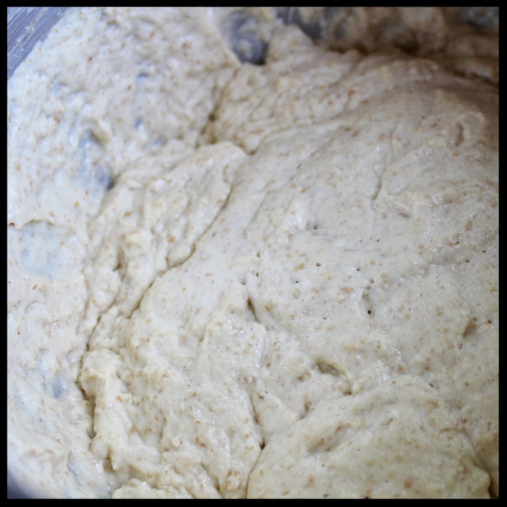 9.  After an hour your dough will have doubled in size and should have tons of fine bubbles at the surface.  If not, let it sit out a bit more until light and bubbly.