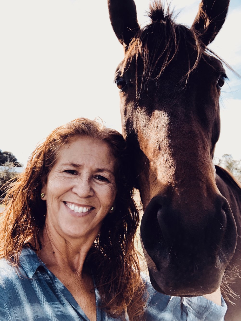 Apache Rose Horse Rescue & Sanctuary - Established in June of 2017501(c) Non-Profit OrganizationOur President: Linda Stewart - Dreamer, Lover of all things 4-legged.Our Mission: We save horses. We provide shelter, food & water, medical care, training & rehabilitation and aim to pair our rescues with their forever families. One horse at a time, one day at a time.