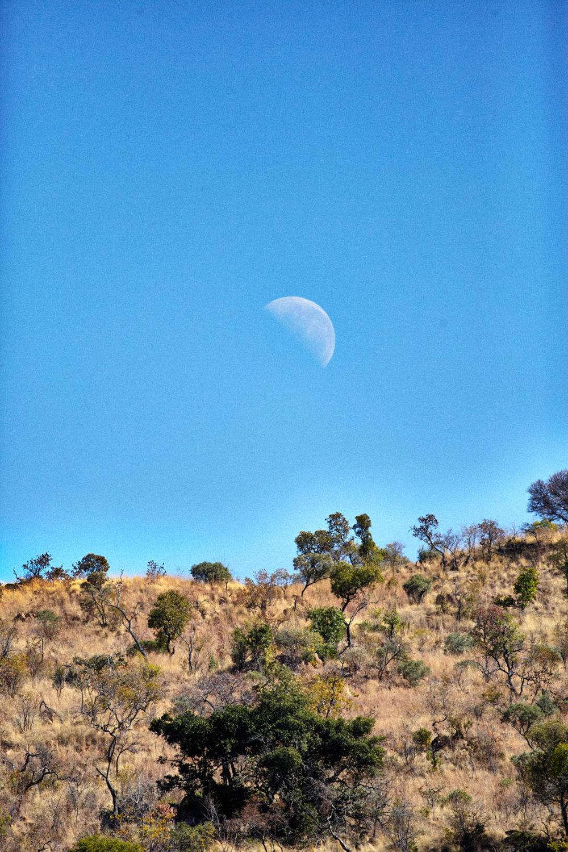 gomes_africa-156.jpg