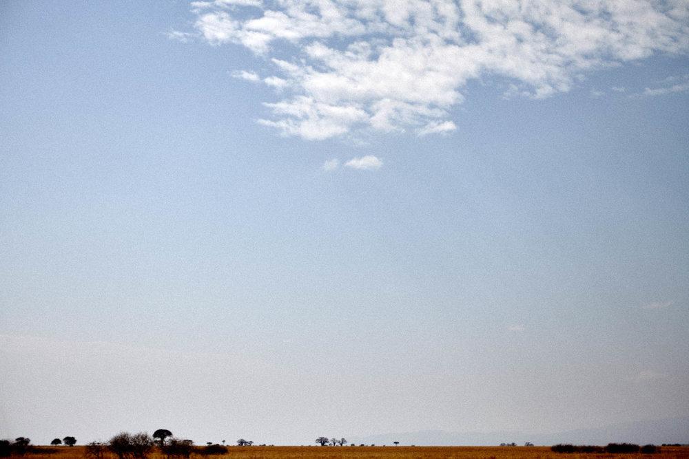 gomes_africa-210.jpg