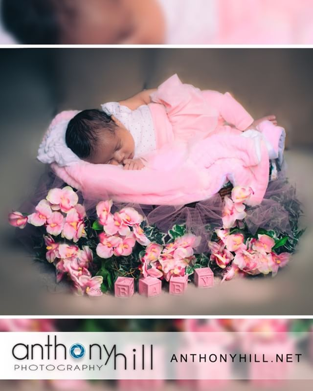 2 Week Old Beauty. Let www.anthonyhill.net capture those unforgettable moments after bringing your bundle of joy into this world. . . #infantphotography #preciousmoments❤️ #nikonusa #profoto #profotob1 #profotoa1 #pearlandphotographer #houstonphotographer #newbornphotography . . . Special Thank You to @snipitsnclipits for the set design and set up.