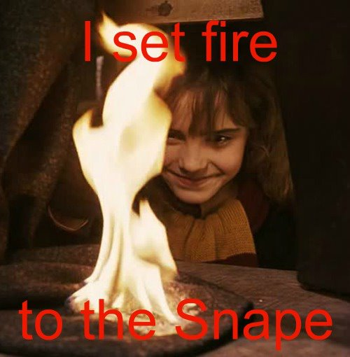 Harry Potter memes - I set fire.jpg
