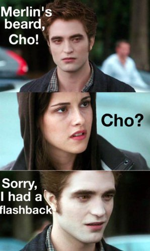 Harry potter memes - Cho.jpg