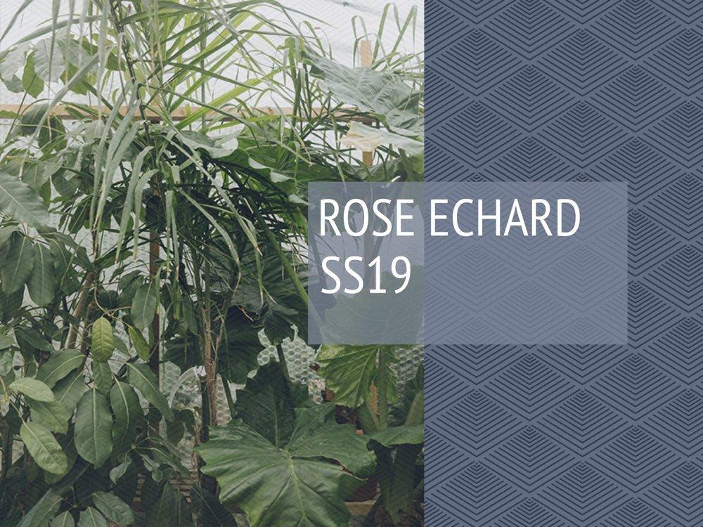 Rose Echard_SPORTSWEAR DESIGN PRESENTATION.jpg