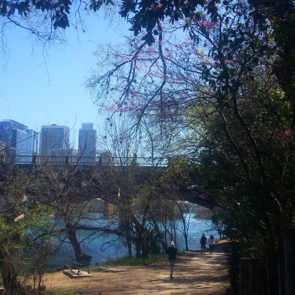 In the foreground is a fairly wide dirt path with a metal bench, one person running, and two people walking together. Beside the path is a river. The path is covered in trees, some green with leaves others with small purple/pink buds. In the background is a bridge and beyond that are skyscrapers in the Austin, TX skyline.