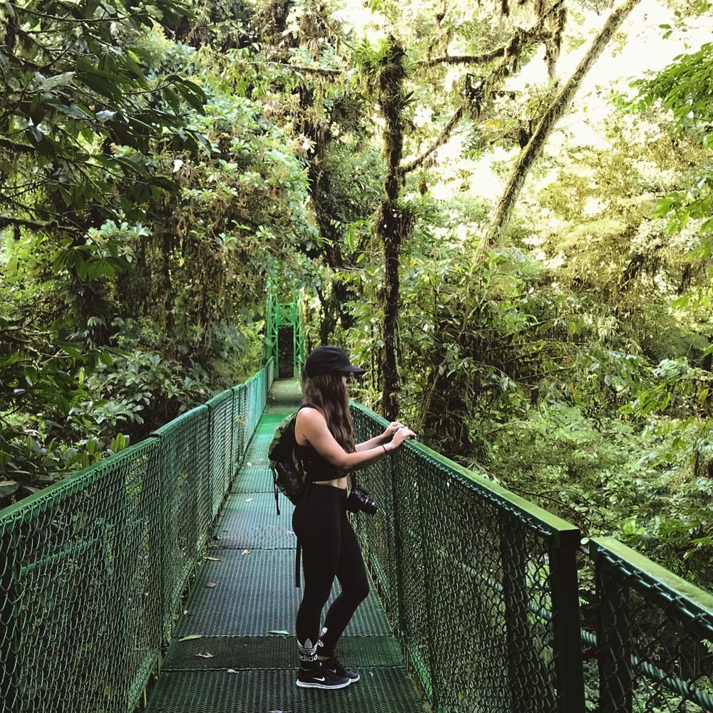 Canopy Hike in the Cloud Forest
