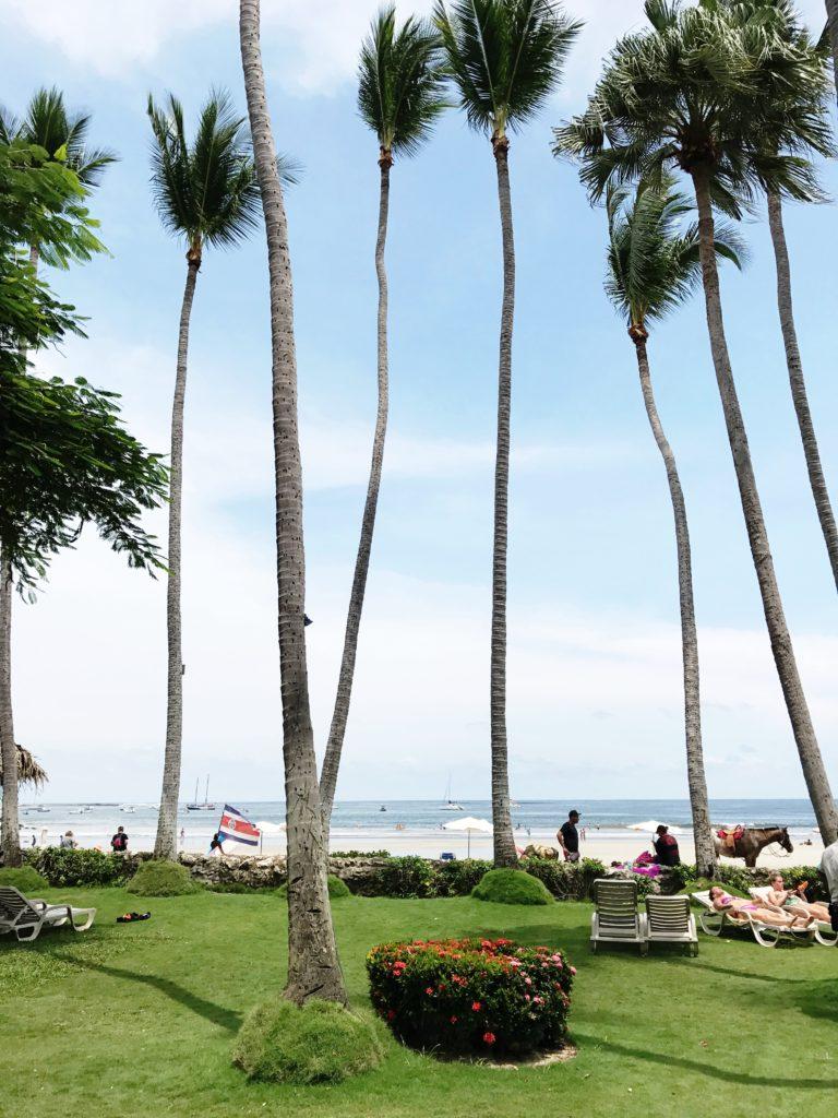 Beachside Pool View at Hotel Tamarindo Diria