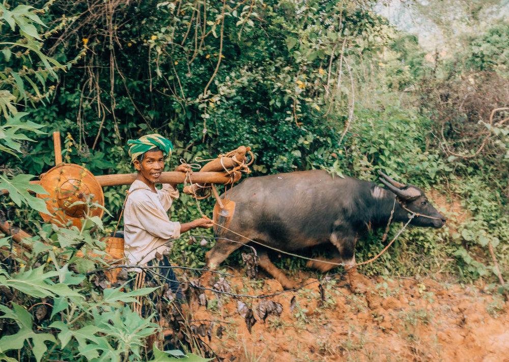 myanmar-unique-things-to-do-inle-lake-trek-3.jpg