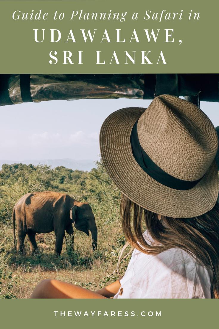 Planning a Safari in Udawalawe, Sri Lanka.png