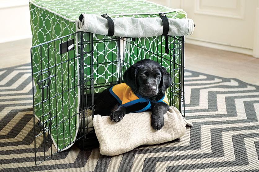 puppy_checklist8