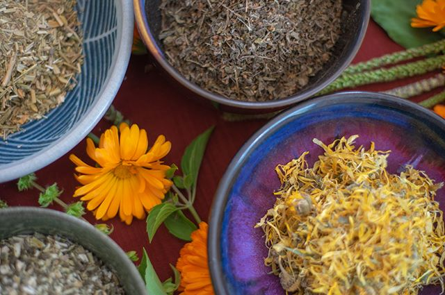 Ahhhh, Yoni Steam Herbs 🌼💛🌼 how I've come to love my beautiful self-care ritual. If you don't know about this smell-goody plant magic, you and your yoni are both missing out! 😉❤️ SO excited to breathe life into this fun +creative + healing endeavor with my dear friend @orcasmandala 👁🌱👁 We've already learned so much together AND what a gift to share this with lovely ladies (cis and trans) for some steamy workshops! 💋🌹 #hotlips #rootmedicine