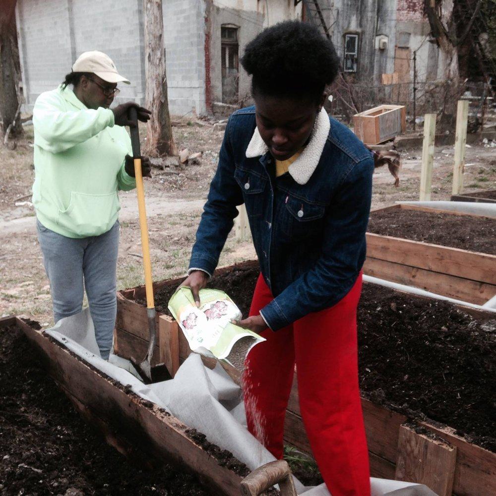 Tubman Durre planting.jpg