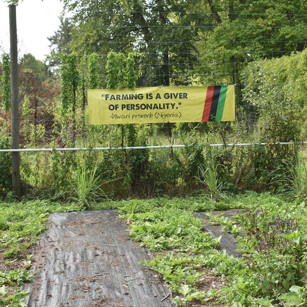 Tubman Garden banner.jpg