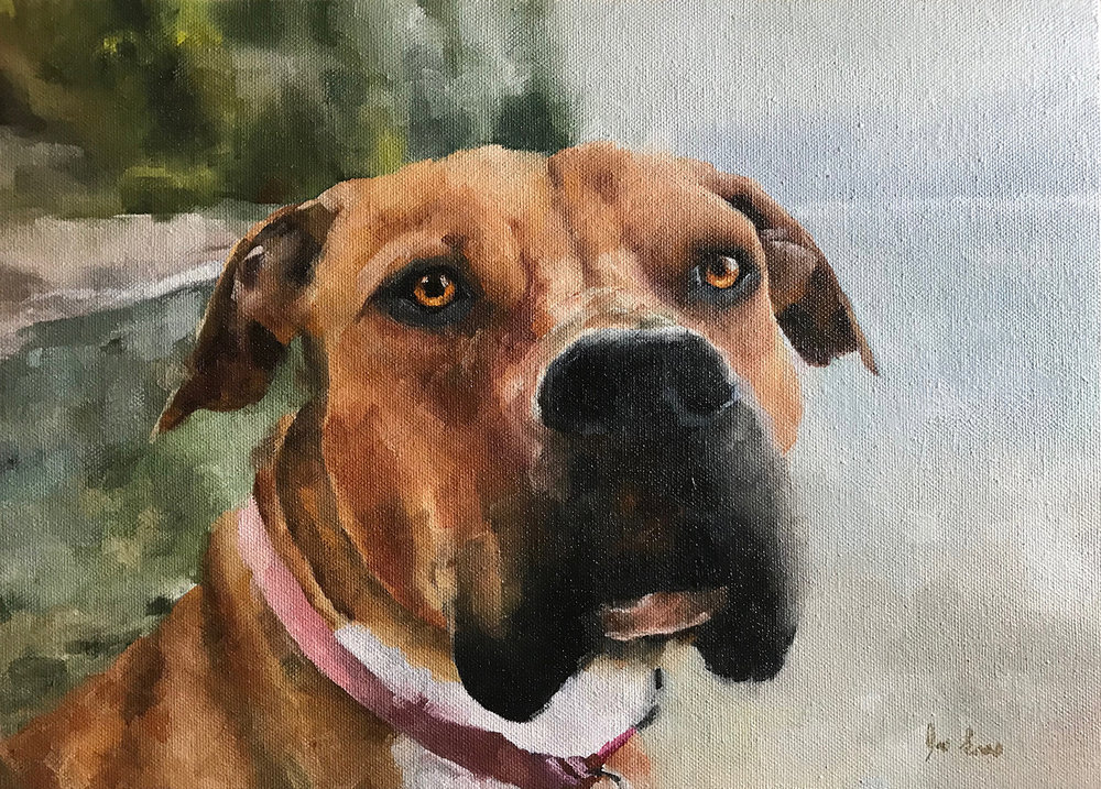 """""""Milli"""" is an oil painting by Joe Enns of a photo taken by his friend and coworker of her dog at Okanagan Lake in British Columbia."""