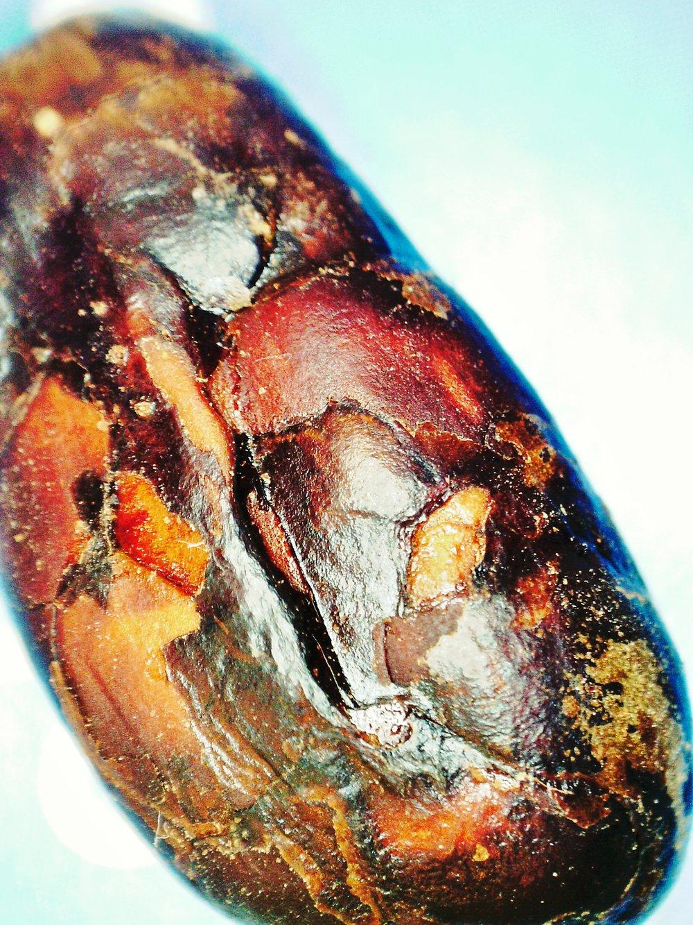 Nacional Cacao Bean: Under electron microscope.© 2015 Geoseph.com