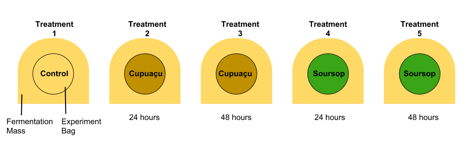 Figure 3: The outer fermenting mass and the 5 different treatment bags and their corresponding time placed inside the mass. All treatments were placed within the same fermentation mass. (Illustrated by Geoseph Domenichiello)
