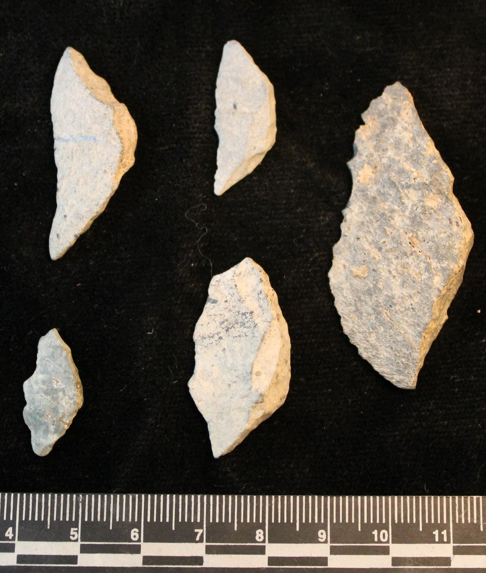 Stone tool analysis - As anthropologists, we are not only concerned with climate change but how societies responded to it. Luckily, early fisher-hunter-gatherers left behind abundant evidence of their economic strategies and lifeways in the form of stone tools, animal bones, and pottery.I am conducting a detailed lithic analysis on the stone tool assemblages from the original 1960's excavations and newly excavated material to determine if there is evidence of technological change through time.Using technological analysis, I will be able to determine if people responded to environmental changes through intensifying existing strategies, or remaining flexible in the face of a changing resource base.