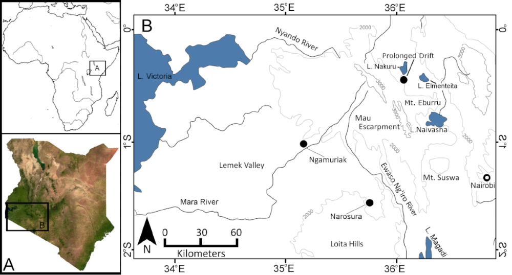 Pastoralist sites in southwestern Kenya with large assemblages of backed crescents. (Goldstein and Shaffer 2017).
