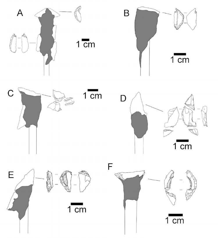 Examples of crescent damage from use in arrows.