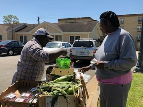 Mobile Market Stop with Albany Housing Authority at Arcadia Commons.