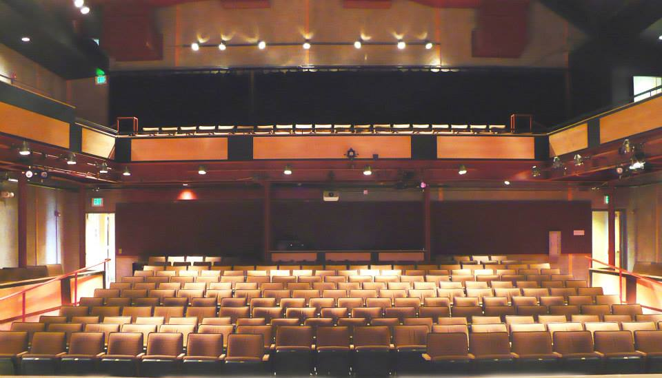 "view from the stage at ""the audi""."