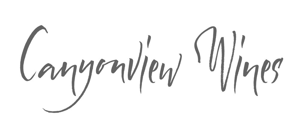canyonview logo type official copy.jpg