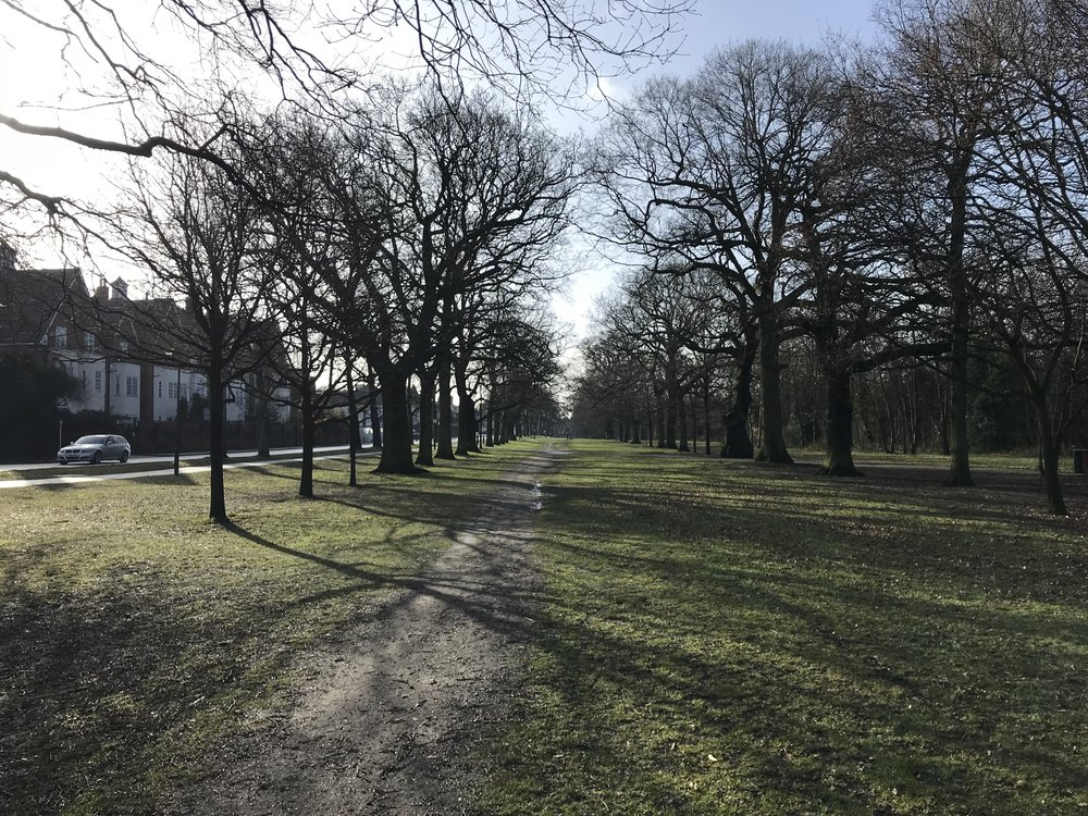 tooting bec common -