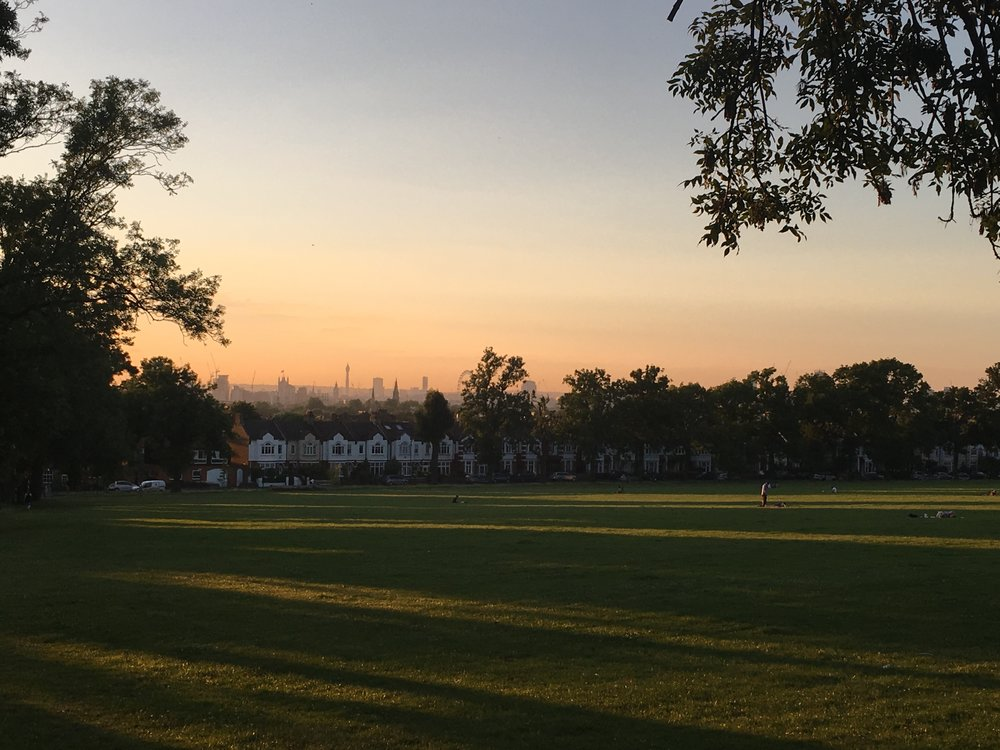Ruskin park from sunset road -