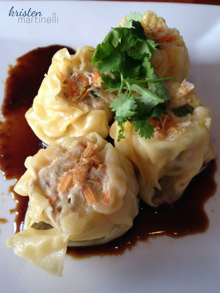 Khao Tip_Thai Dumpling_KMartinelli Blog_Writer & Marketer