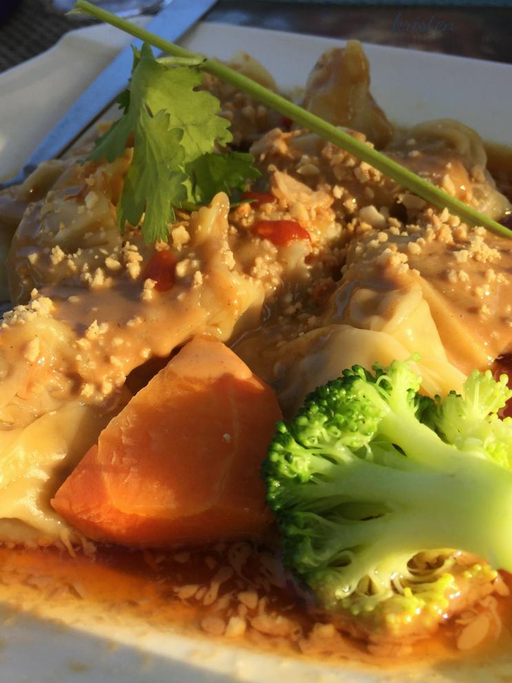 Kristen Martinelli Blog _ KMartinelli Writer & Marketer_Double Ai Appetizers_Szechaun Dumplings.png