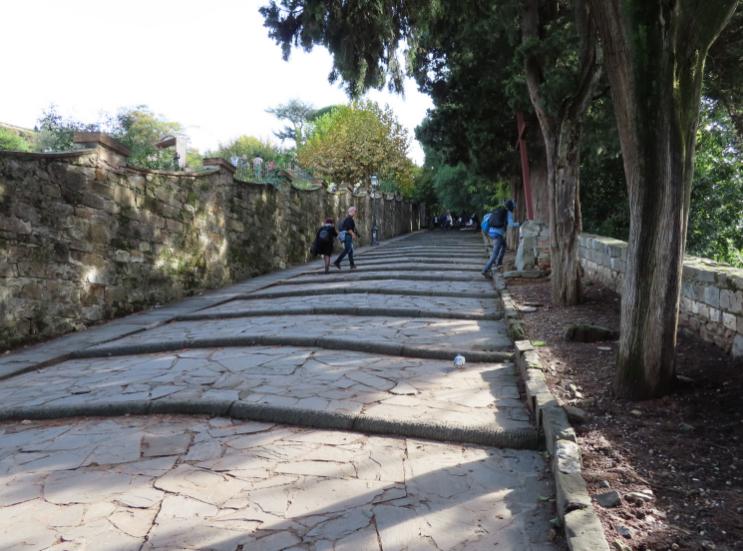 Panini & Vini_Mountain Staircase_Florence Italy_K. Martinelli Blog _ Kristen Martinelli (1).png