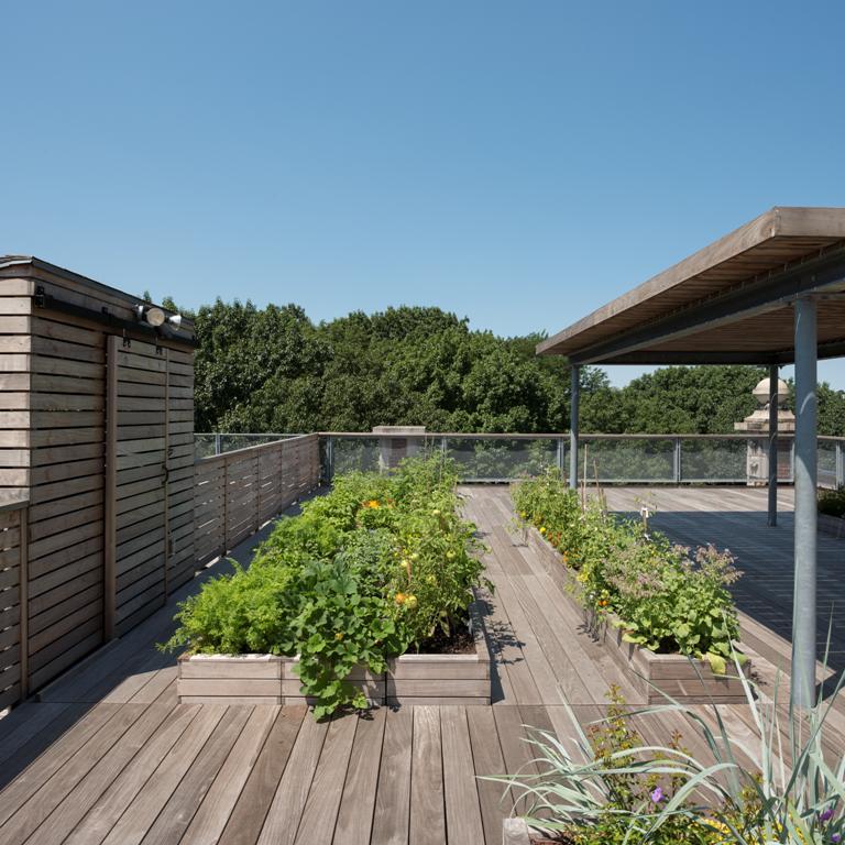 Riverside Roof Garden11.jpg