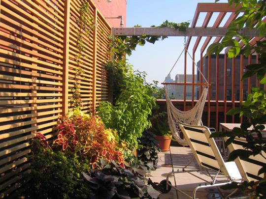 terrace_01_02.JPG