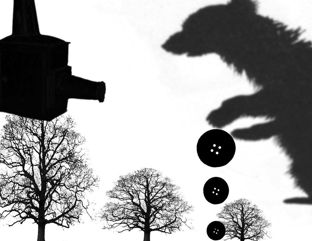 Shadow Puppet Workshop, BAMcinematic, 2013