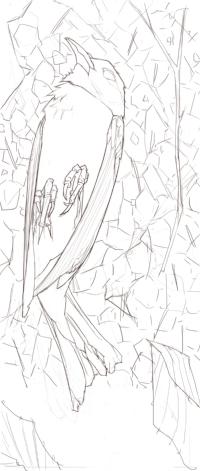 Dead Bird.jpg