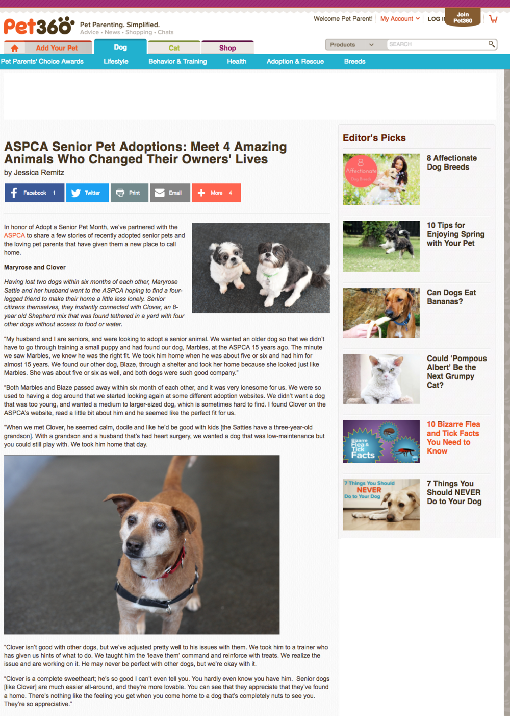 ASCPA Senior Pet Adoptions_Pet360 copy.png